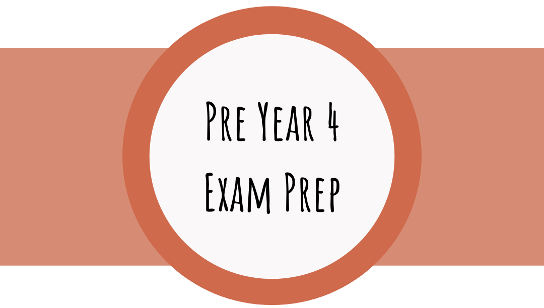 Pre Year 4 Exam Prep with Bettering Youth