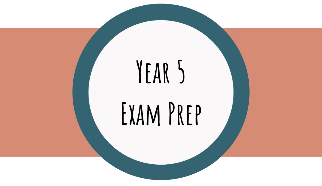 Bettering Youth's Year 5 exam preparation course